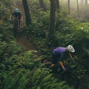 Trail/All Mountain