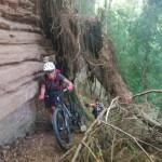 Radsport-Wagner_womans_ride_2020_18