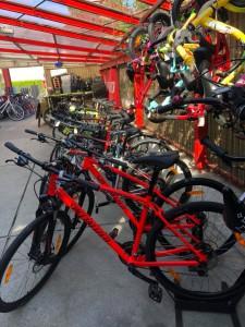 Sommerfest_2018_Bikes_5